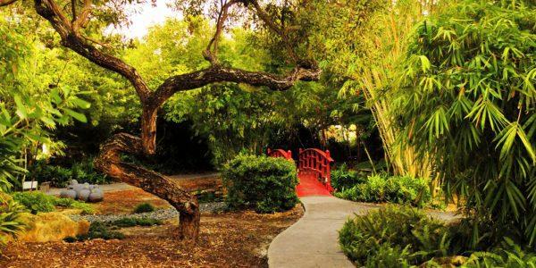 Miami Beach Botanical Garden 2136